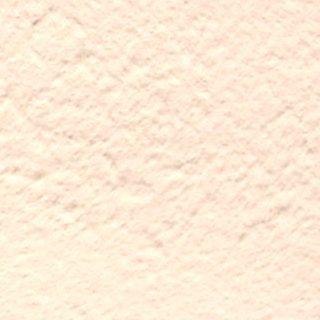 プロヴァンスの色土(オークル)アプリコット100